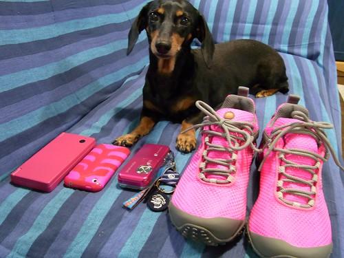pink! pink!! pink!!!