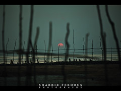 Through the Fence (Shabbir Ferdous) Tags: blue light sunset red people sun fence landscape photographer shot capture tone bangladesh bangladeshi sundarban canonef70200mmf28lisusm rashmela canoneos5dmarkii shabbirferdous dublarchor rashpurnima wwwshabbirferdouscom shabbirferdouscom