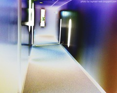 Curves Gone Wild -  A Hallway with Sunlight Peeking In (rafalweb (moved)) Tags: blue windows red sun sunlight colors curves centro halls palm hallways photoscape