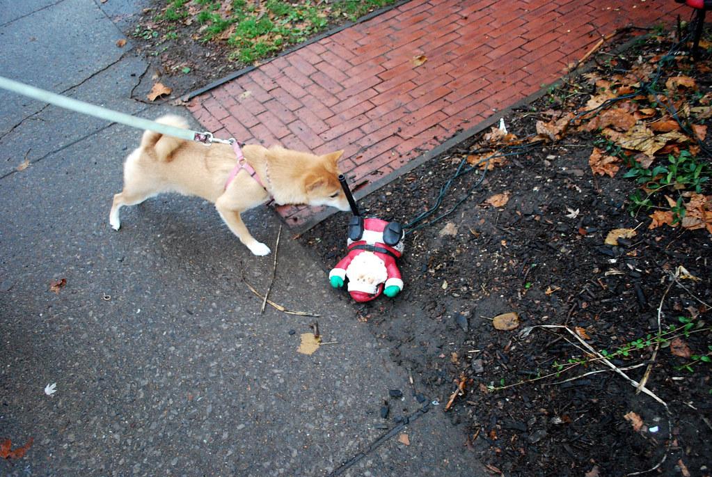 Investigating Santa