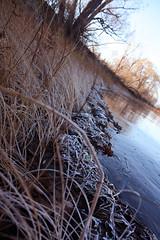 Frosty Ottawa Morning (SBC9) Tags: frost ottawa shore ottawariver