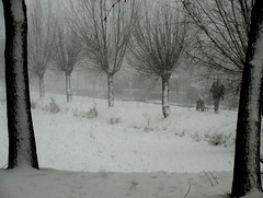 Sleetje rijden (Moser's Maroon) Tags: trees snow bomen ride sneeuw sleigh slee rijden sleetje