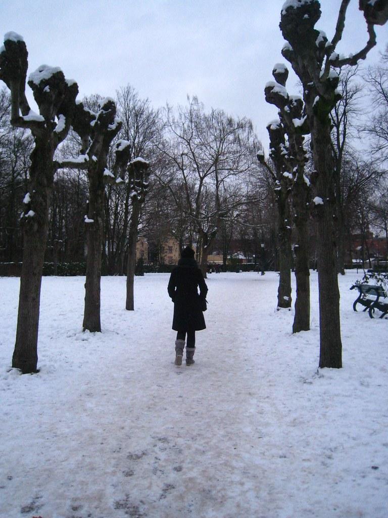 Au MinnewaterPark à Bruges