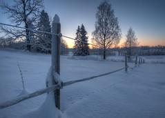 Cold (mortenprom) Tags: winter snow norway norge skandinavien norwegen explore noruega scandinavia noorwegen noreg bærum sandvika skandinavia ef1740mmf4lusm vestmarka canoneos5dmarkii mortenprom vestmarksveien