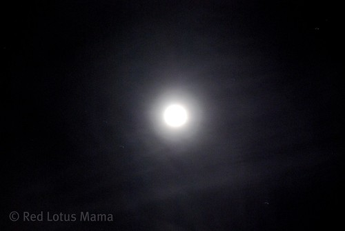 New Year's Eve bluemoon