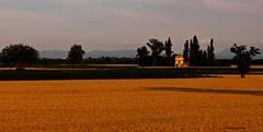 quando il giorno se ne va (mat56.) Tags: sunset landscapes tramonto fine campagna piemonte paesaggi alessandria giorno cascinale mat56