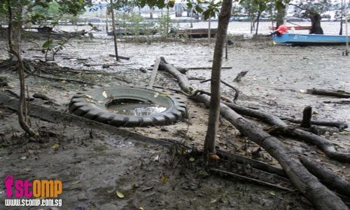 """Clean up Lim Chu Kang beach before it turns into marine graveyard"""