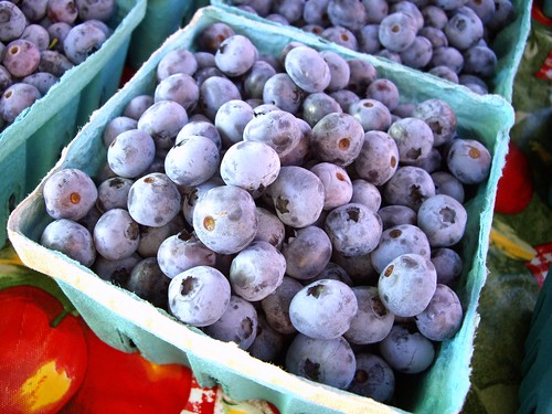 Blueberries from The Orchard of Bill and Vicky Thomas