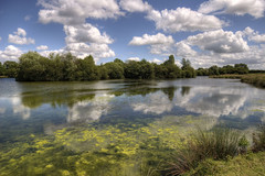 England: Northamptonshire - Summer Day (Tim Blessed) Tags: uk trees sky nature water clouds reflections reeds landscape countryside scenery lakes wetlands ponds singlerawtonemapped