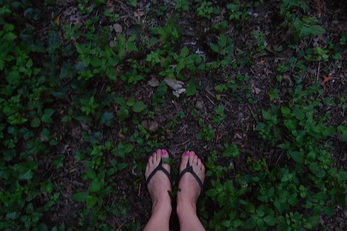 my feet and firefly hunting in NJ