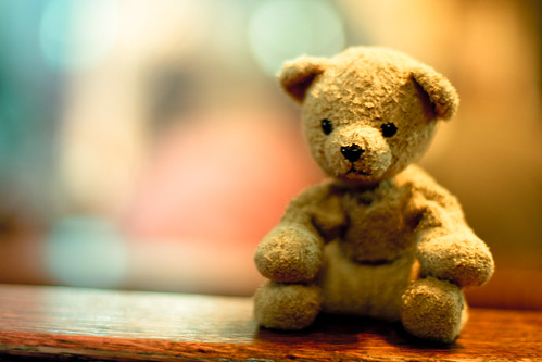 sad little teddy should turn around and look at the nice bokeh