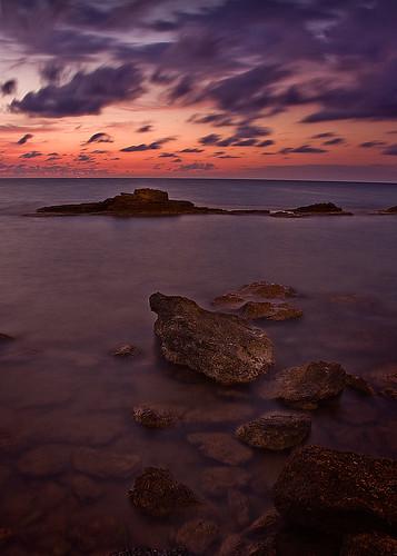 La isla de piedra y musgo