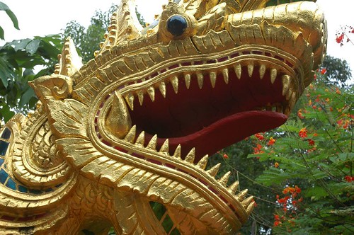 Temple naga close-up, Chiang Rai