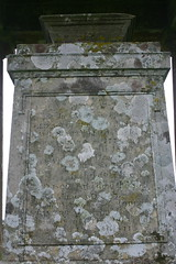 Scot Grave - Scottish Borders
