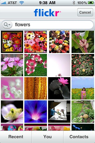 Searching Flickr iPhone App