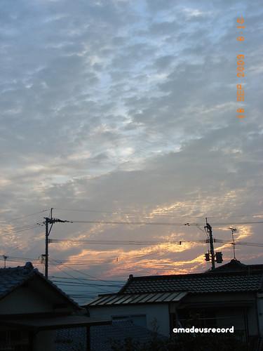 今日は暖かい朝です。台風が来ているからかしら。