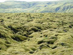 mare verde (neroeroe) Tags: ice iceland colori arcobaleno viaggio ghiaccio cascate islanda