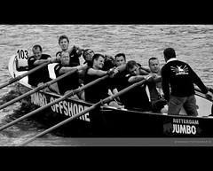 Expressions ( WimKok) Tags: bw amsterdam sport canon expression rowing jumbo roeien amstel mumbojumbo roeiboot expressie sloep canalrace eos50d grachtenrace rowingrace roeiwedstrijd jumboshipping jumbooffshore
