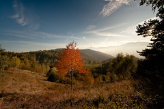 Passion for RED (pk69) Tags: autumn red panorama mountain color tree del canon landscape albero autunno rosso 1022 colle 400d cr