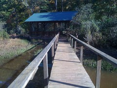 Tumbling Creek Wetland Pavillion