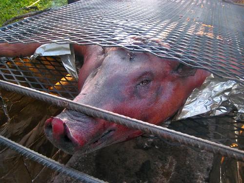 Pig face!