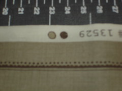 DSC08967.JPG