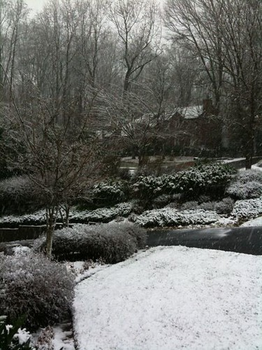 It's snowing!!!