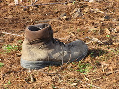 2008 - 12 - 30 - old boot by the driveway (Mississippi Snopes) Tags: yard warm itchy damp athletesfoot synecdoche oldboot greenvillemississippi
