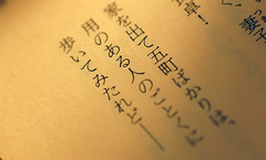 takuboku ishikawa (emmdeesee) Tags: macro toys japanese poem sad ishikawa tanka sadtoys poormansmacro raynoxdcr250 takuboku   nikond40 nikkor35mmf18  tankobon ishikawatakuboku katsuji  kanashikiganu  carlsesar