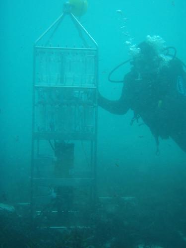 P9280400-CSIRO-RAS-100-underwater