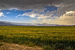 Abr Jungle (Mostafa Karimi) Tags: iran  hdr bastam cloudjungle shahroud iranmap  abrjungle  iranmapcom iranhdr