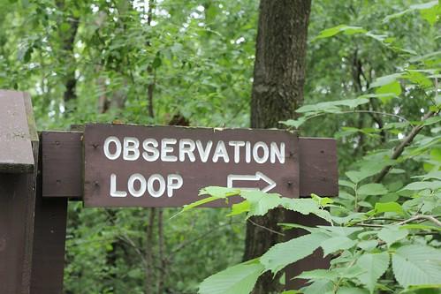 Scenic Overlook This Way!