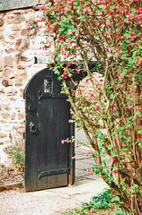 Dunster.  March 2000 (Cynthia of Harborough) Tags: 2000 architecture bushes doorways entrances gardens