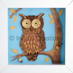 Quilled owl (Inna's Creations) Tags: bird bug paper miniatures oak crafts acorn owl decor filigree quilling נוי נייר chigirie ציפור יצירה חרקים ינשוף קווילינג