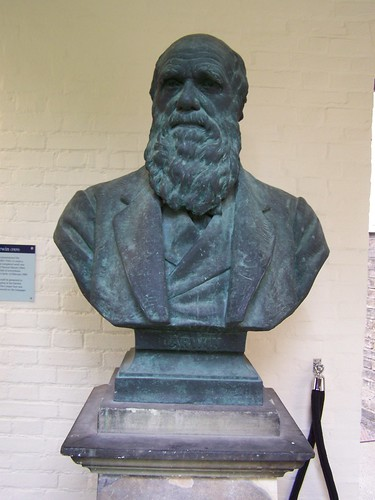 Darwin Bust by William Couper (replica), Christs College, University of Cambridge
