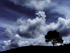 One Tree Hill (EXPLORE # 56 JULY 27, 2009) (Gilbert Rondilla) Tags: camera blue sky plants house plant color tree nature silhouette horizontal clouds photoshop garden dark point photo nikon shoot philippines hill explore retreat getty lone gilbert filipino duotone digicam tagaytay notmycamera own pinoy s10 borrowedcamera oss pns novitiate tagaytaycity rondilla notmyowncamera pkchallenge gilbertrondilla gilbertrondillaphotography luisianian ikawaypinoy sistersoblatesoftheholyspirit sistersoblates gettyimagescollection gettyimagesphilippinesq1