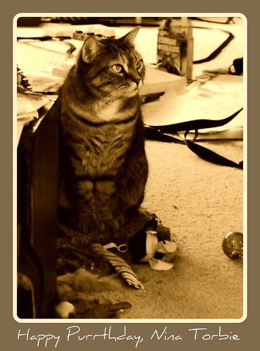 Purrthday Nina in Sepia