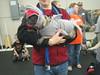 Pug-o-ween 2009 386 (shaunodead) Tags: walter halloween pug 2009 pugoween
