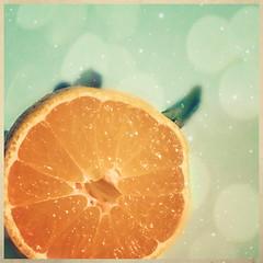 Citrus Explosion