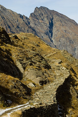 Disegni con le rocce (Valsavarenche, Parco Nazionale del Gran Paradiso, Valle d'Aosta-Vallée d'Aoste) (Sisto Nikon - CLICKALPS PHOTOGRAPHER) Tags: montagna montagne monte monti mountain mountains alpi alp alps valledaosta valléedaoste aostavalley paesaggio paesaggi panorama panorami landscapes natura naturalistica nature sentiero sentieri camminare camminata escursione escursionismo trekking hike hiking ao sisto sisti nikon autunno autumn paysages randonnée ottobre october valsavarenche levionaz alpeleviona herbetet puntafourà parconazionaledelgranparadiso granparadisonationalpark pngp colori larici fauna luci light atmosfera atmosphere lumières neve neige snow ghiaccio