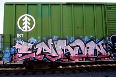 I B T (TRUE 2 DEATH) Tags: railroad streetart art train graffiti tag graf traintracks trains railcar spraypaint boxcar hcm nr railways railfan freight enron freighttrain rollingstock vts catcult benching freighttraingraffiti dtmc enronnr