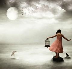 The Birdcage (-Delphine -) Tags: idream specialpicture thesuperbmasterpiece bestcapturesaoi magiayfotografia elitegalleryaoi