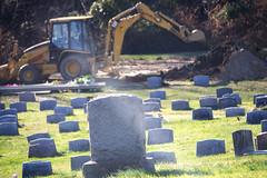 cimetière pour chat