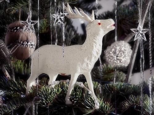 albino deer by Avant-Gardenist.