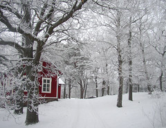 house and trees (Per Ola Wiberg ~ Powi) Tags: winter snow niceshot sweden january explore harmony oaks hwa 2010 musictomyeyes aclass ekar awesomeshot beautifulearth wonderworld goldheart supershot thegalaxy eker golddragon flickrgold diamondheart photosandcalendar flickrsilveraward heartawards exemplaryshotsflickrsbest wonderfulworldmix flickridol naturestyle crazyaboutnature peaceawards thebestshot beautifulshot abovealltherest grupodehablahispana naturestreasures extendelement panoramafotogrfico doubledragonawards photographerparadise dragonflyawardsgroup thebestofmimamorsgroups visionaryartsgallery ~contactgroup~ crazyaboutnatureawards todaysbest goldenplanet shootingstarsawards fabulousplanet zodiacawards mygearandme mygearandmepremium ~justnature~ mygearandmebronze doublestaraward mygearandmesilver mygearandme2premium ringexcellence hellofriend natureskingdomawards niceasitgets~level1