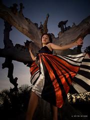 """Joan Boro """"Monarch Butterfly Spreading Her Wings"""" (alvinj88) Tags: cleevillasor alvinjasonarzaga philcalumpang erorlavistecusap joanboro"""