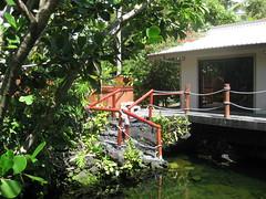 Pond, house rental, Lagoon Shangrila