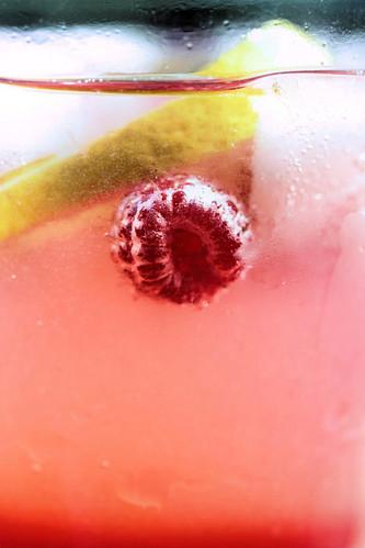 raspberry cooler 3346 R