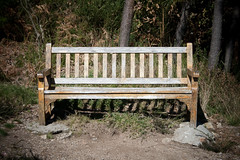 Banco (MGM_Photos) Tags: wood bench madera chair walk seat banco used paseo abandon descansar sit rest tousled descanso varnish abandono sentarse gastado barniz ajado