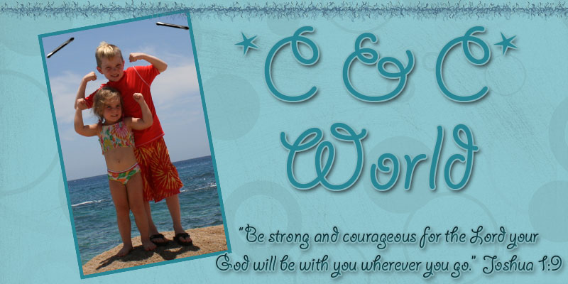 C & C World